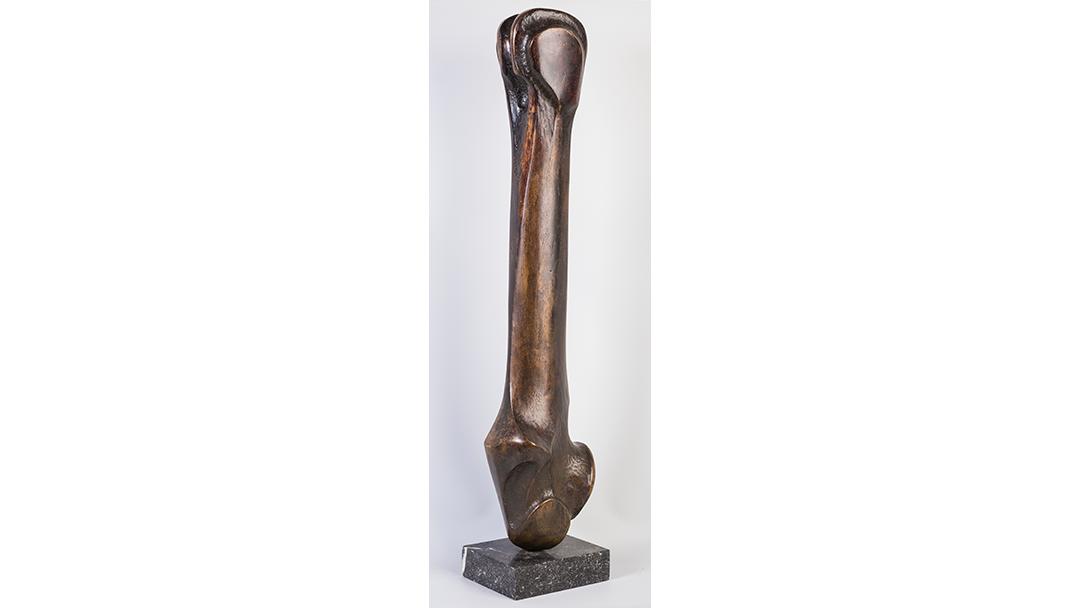 Jean Houben - The bone
